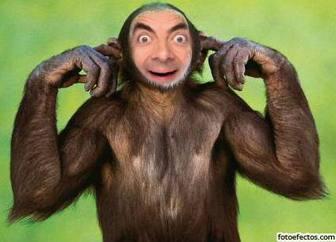 Fotomontaggio di scimmia che non ascolta modificare con la tua foto