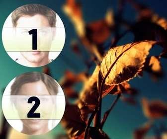 collage due telai cerchio accanto un autunno foglia doro