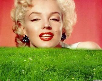 Cornice per erba verde nella tua foto.