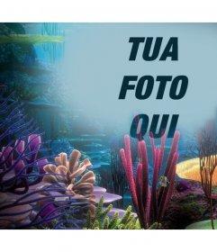 La tua foto sul mare con coralli, basta caricarlo in tal senso fotografico online
