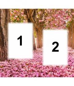 collage libero di modificarla con tre immagini e aggiungerli ad un paesaggio fiorito