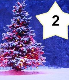 Collage di Natale con un albero di mettere due foto