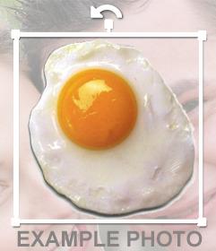 Adesivo Fried per mettere su le immagini senza la necessità di scaricare alcun software uovo