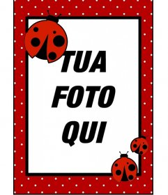Photo frame con pois e coccinelle