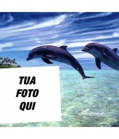 Postale di vacanza per modificare con la tua foto e inserirlo con due delfini