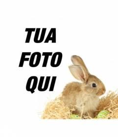 Fotomontaggio con un coniglio e uova di Pasqua da aggiungere alle tue foto online e gratis