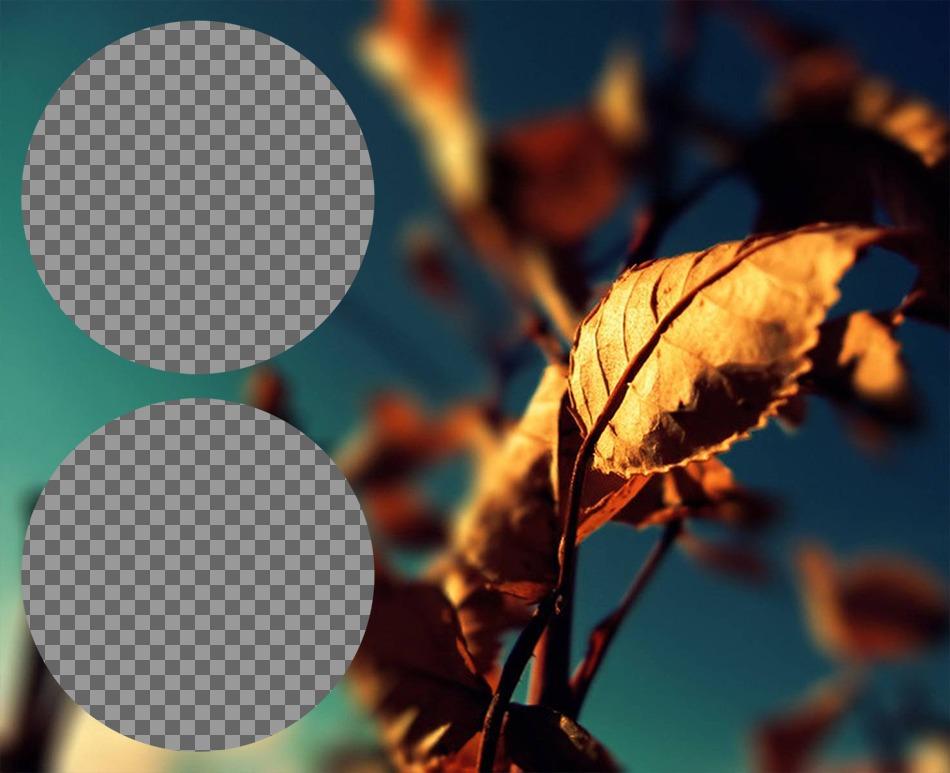 Collage con due telai cerchio accanto a un autunno foglia doro