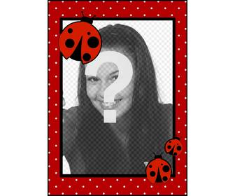 photo frame pois e coccinelle