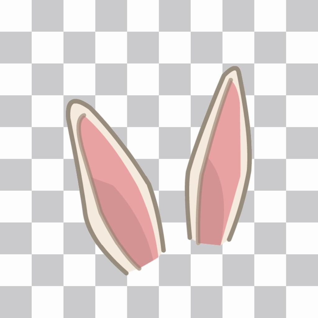 Adesivo da mettere orecchie di coniglio sulla vostra immagine
